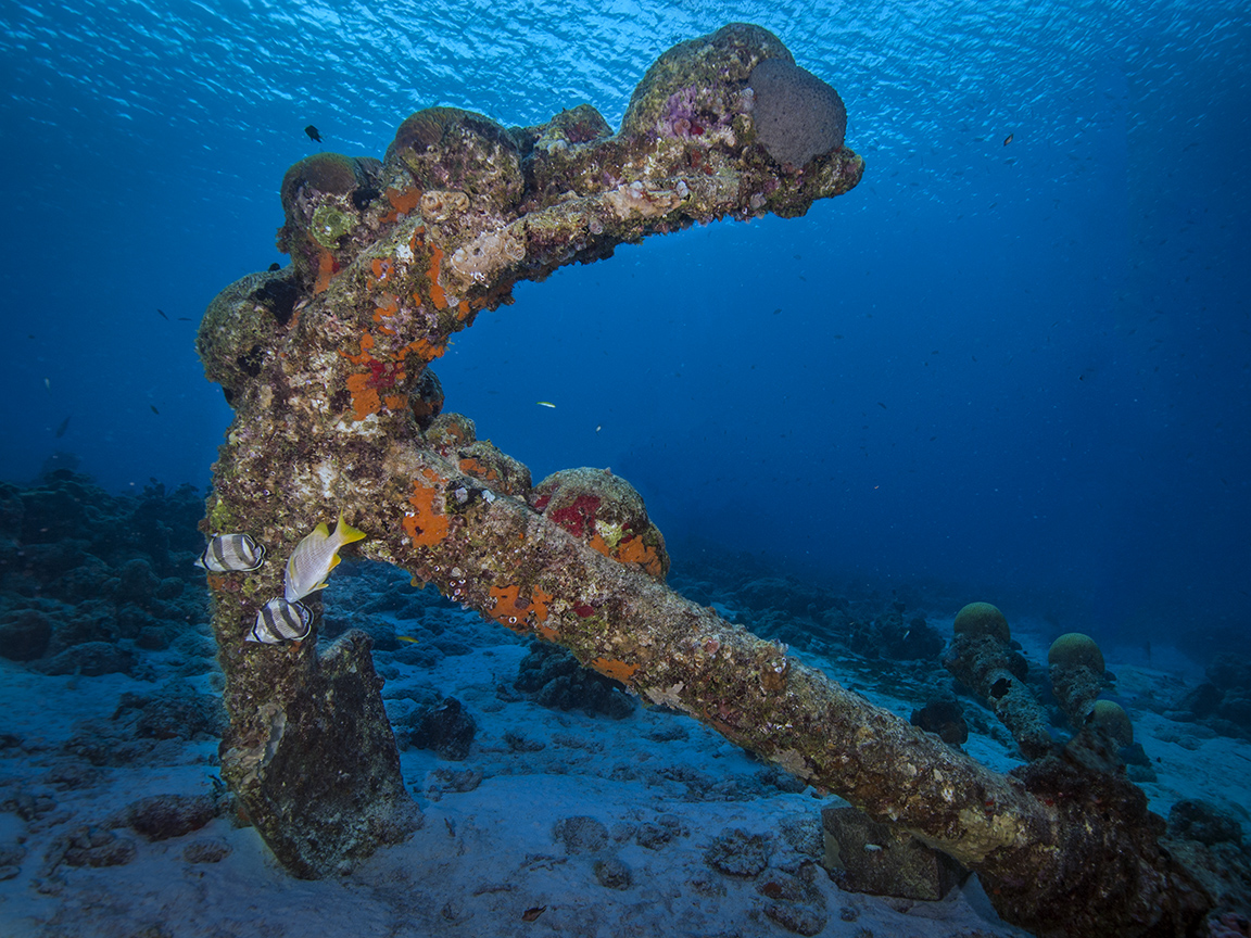 Bonaire anchor